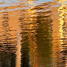 Sunset Reflections by Kathie Nichols