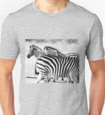 Zebra in black and white  T-Shirt