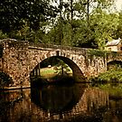 Najac Bridge by Rob Lewis