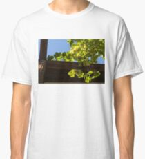 Overhead Grape Harvest - Summertime Dreams of Fine Wine Classic T-Shirt