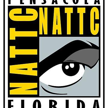 NATTC Pensacola comic by bronavy