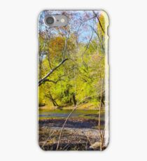 SILVER CREEK AT THE FALLS iPhone Case/Skin