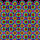 Phyllotaxis-001 by Rupert Russell