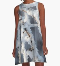 Snowy twigs  A-Line Dress