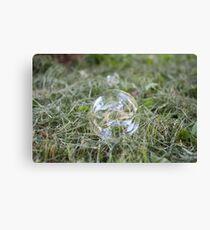 Bubble on Cut Grass Canvas Print