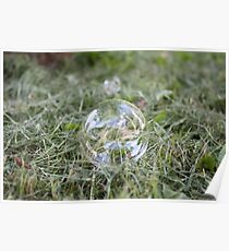 Bubble on Cut Grass Poster