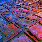 Square Stones Pathway Number 41 by Mike Solomonson