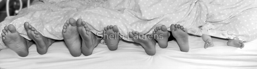 Who's been sleeping in my bed ? by Sheila Laurens