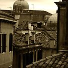 Rooftops of Venice by dunawori