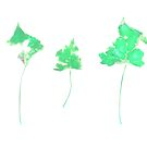 Somebody had Leaf for Lunch Trio - Green by Mike Solomonson