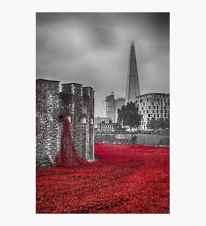 Blood Swept Lands 3 Photographic Print