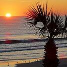 Beautiful Morning by Mary Kaderabek-Aleckson