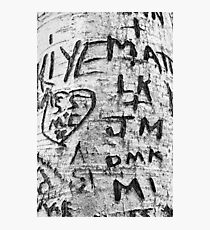Love messages carved in the tree in Lover's Lane, Green Gables Photographic Print