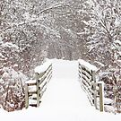 The Winter Bridge  by lorilee