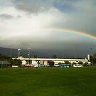 Harder Stadium Rainbow by Brian Haidet