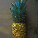 Pineapple at Rest by Mike Solomonson