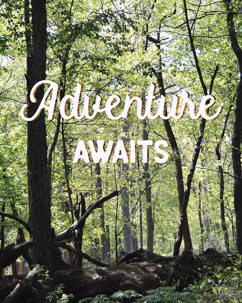 Adventure Awaits by ATGinc