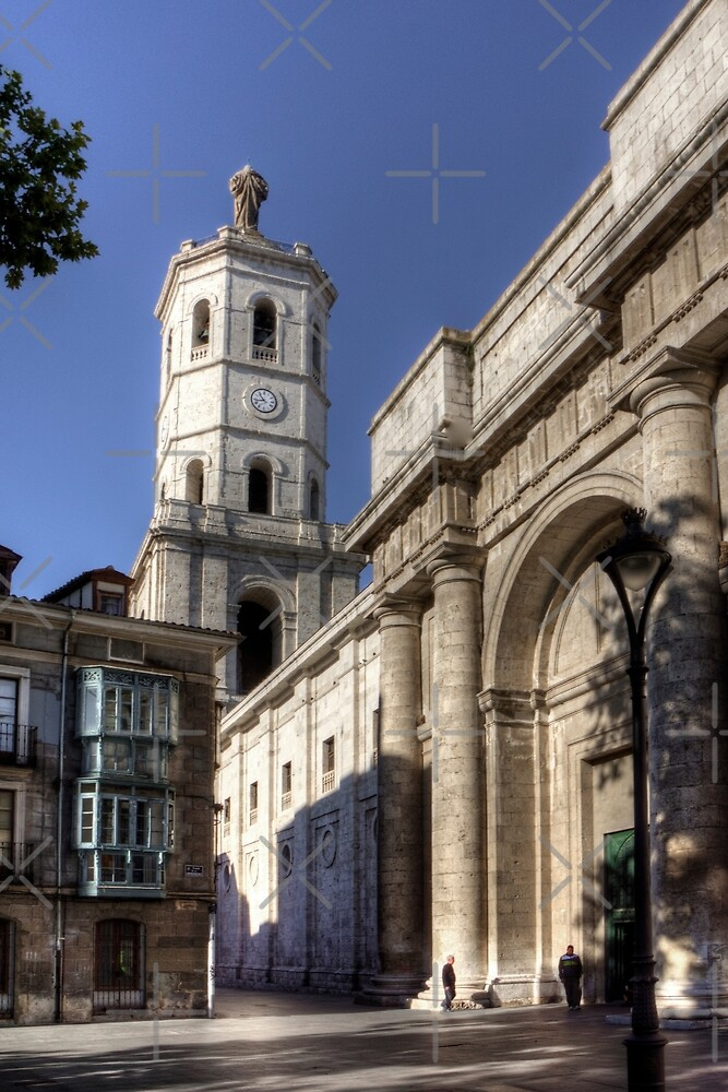 Valladolid Cathedral Tower by Tom Gomez