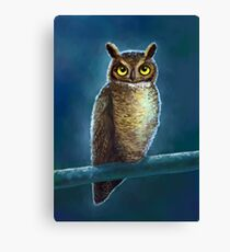 Night Owl Leinwanddruck