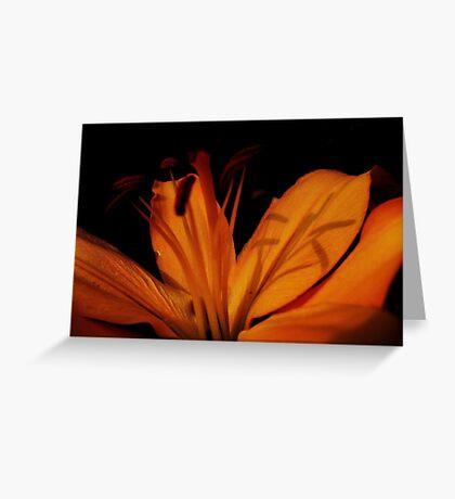 Shadow Print... Greeting Card