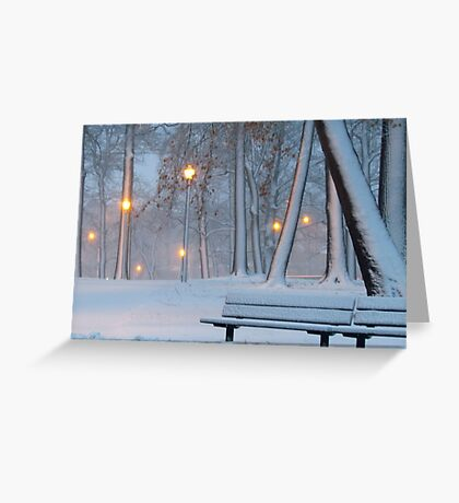 Winter walk in the park Greeting Card