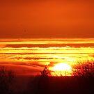 December sunrise by poohsmate