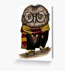Owly Potter Greeting Card
