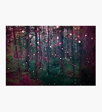 Forest Trees Nature Walk - Magical Fairy Glow Night Photographic Print