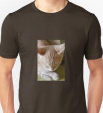 KITTEN SLEEPING Unisex T-Shirt