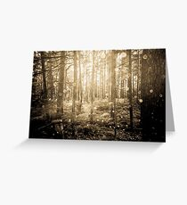 Forest Trees - Vintage Sepia Magical Lights Woods Greeting Card