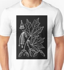 Britton And Brown Illustrated flora of the northern states and Canada 0022 Acer saccharum drawing Unisex T-Shirt