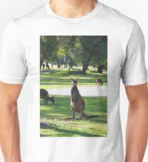 Kangaroo Golfers T-Shirt