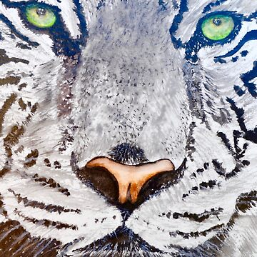 "150. ""Tiger's Eyes"" by M.Viljoen by mviljoenart"