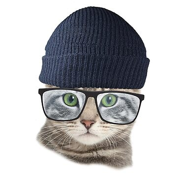 Cool cat by effence