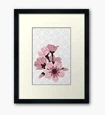 Cherry Blossoms - white Framed Print