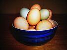 Eggs in Bowl by FrankieCat
