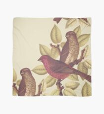 Tropical Birds Design Scarf