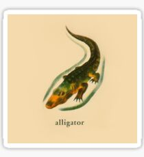 A is for Alligator Sticker