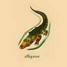A is for Alligator by dickybow