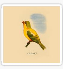 C is for Canary Sticker