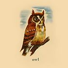 O is for Owl by dickybow