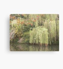 Nature on the river Canvas Print