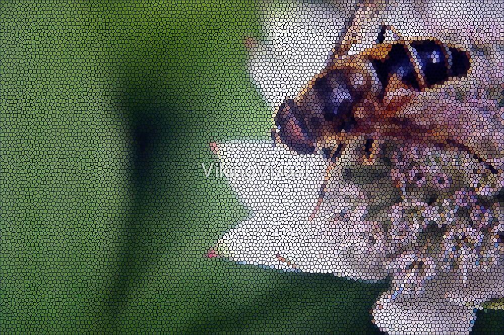Macro Drone Flower B by VikingVisual