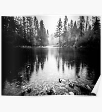 Forest Reflection Lake - Black and White Nature Water Reflection Poster