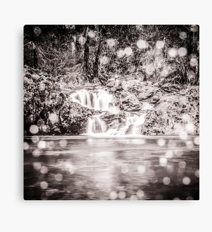 Waterfall Nature Water - Magical Black and White Waterfall Canvas Print