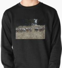 Rounding Up the Dorper Sheep to send them home! T-Shirt