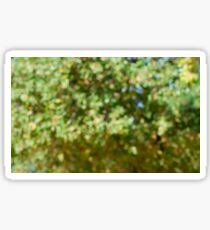 Out of focus foliage in a garden Sticker