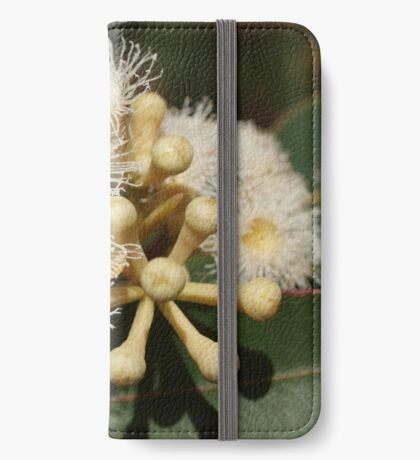 Cream Eucalypt iPhone Wallet