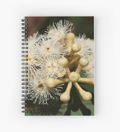 Cream Eucalypt Spiral Notebook