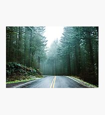 Forest Road Trip - Foggy Day Fir Trees Pacific Northwest Adventure Photographic Print